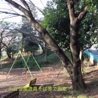小台公園IMG_1858