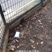 宮前平公園2IMG_1861